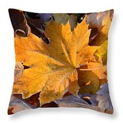 Canada In My Mind Throw Pillow
