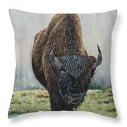 Canadian Bison Throw Pillow
