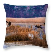 Canadian Flight 4 Throw Pillow