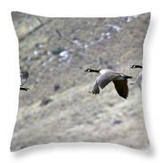 Canadian Flight Throw Pillow