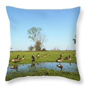 Canadian Geese Community In West Haven Throw Pillow