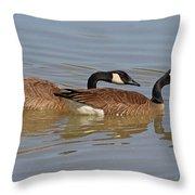 Canadian Geese Mates Throw Pillow