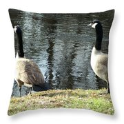 Canadian Geese On Spaulding Pond Throw Pillow