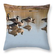 Canadian Geese Stop Over Throw Pillow