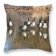 Canadian Geese Watching Throw Pillow