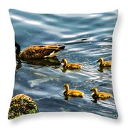 Canadian Goose And Goslings Throw Pillow