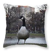 Canadian Goose At Boston Public Garden Throw Pillow