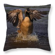 Canadian Goose Smooth Landing Throw Pillow