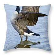 Canadian Goose Stretching Throw Pillow