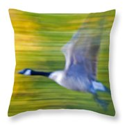 Canadian In Flight Throw Pillow
