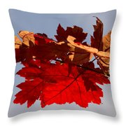 Canadian Maple Leaves In The Fall Throw Pillow