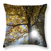Canadian Maple Throw Pillow