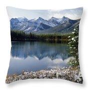 1m3541-canadian Peak Reflected In Herbert Lake Throw Pillow