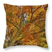 Canadian Tree 2012 Throw Pillow