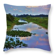 Canal In The Glades Throw Pillow