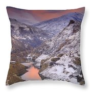 Canales Throw Pillow
