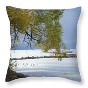 Canandaigua Lake Outlet Throw Pillow