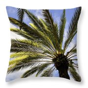 Canary Island Date Palm Throw Pillow