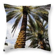 Canary Island Date Palms Throw Pillow