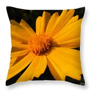 Canary Marigold Throw Pillow
