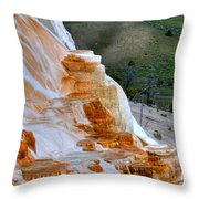 Canary Spring Throw Pillow