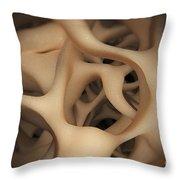 Cancellous Bone Throw Pillow