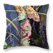 Candied Fungus Throw Pillow