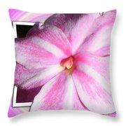 Candy Cane Flower Throw Pillow