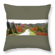Candy Land On The Blueridge Parkway Throw Pillow