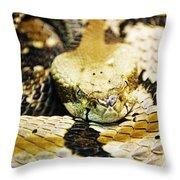 Canebrake Throw Pillow