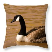 Canidian Goose On Golden Pond Throw Pillow