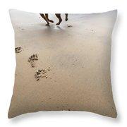 Canine Beach Jogging Throw Pillow