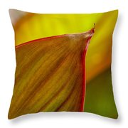 Canna Lily Leaf Throw Pillow