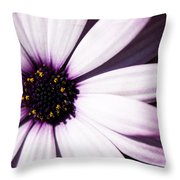 Cannington Roy Throw Pillow