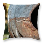 Cannon Barrel Fountain Of Youth Throw Pillow by Christine Till