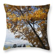 Cannon On Top Of Lookout Mountain Throw Pillow by Bruce Roberts