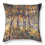 Canopy Collage Throw Pillow