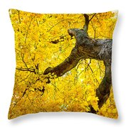 Canopy Of Autumn Leaves Throw Pillow