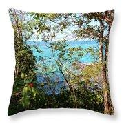 Canopy Vista Throw Pillow