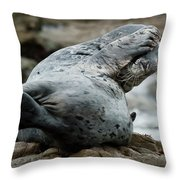 Can't Bear To Look Throw Pillow