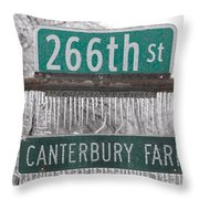 Canterbury Ice Throw Pillow