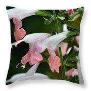 Cantigny - 62 Throw Pillow