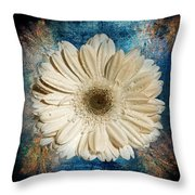 Canvas Still  Throw Pillow