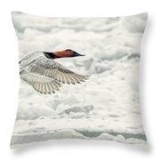 Canvasback Duck In Flight Throw Pillow