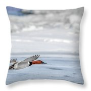 Canvasback Duck On Ice Throw Pillow