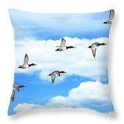 Canvasback Ducks In Flight Throw Pillow
