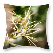 Canyon Cactus Throw Pillow