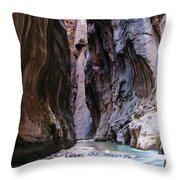 Canyon Color Throw Pillow