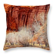 Canyon De Chelly - Spring II Throw Pillow