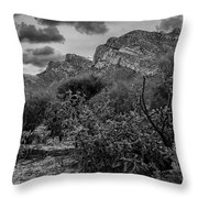 Canyon Del Oro No.48 Throw Pillow
